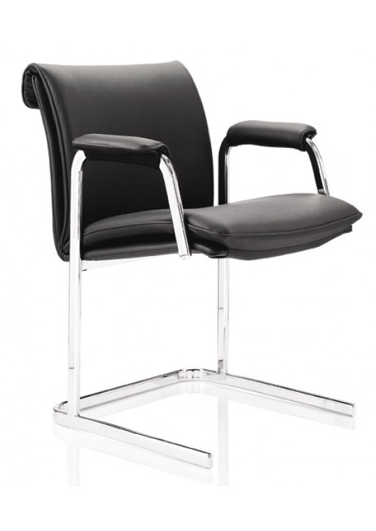 Delphi Low Back Meeting Chair